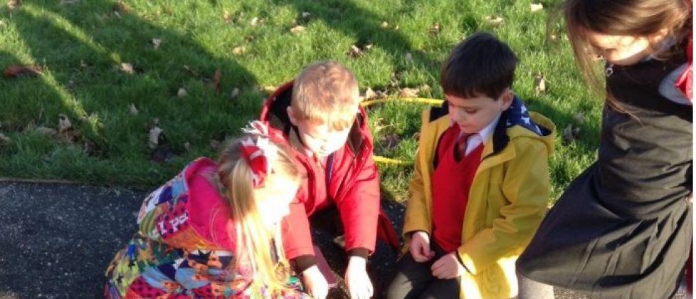 http://knowsleyvillageschool.co.uk/wp-content/uploads/2018/03/y1wood-2.jpg